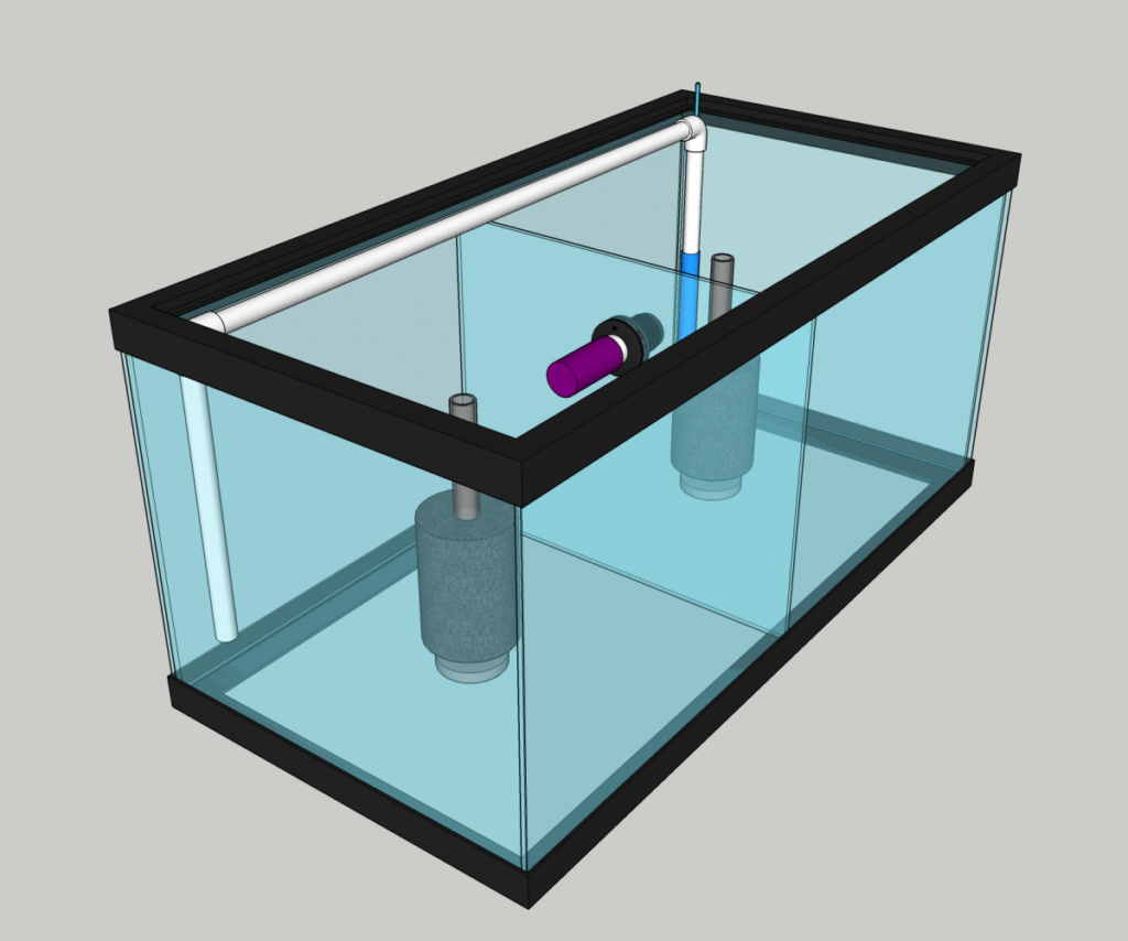 Setting up Mysis shrimp tank